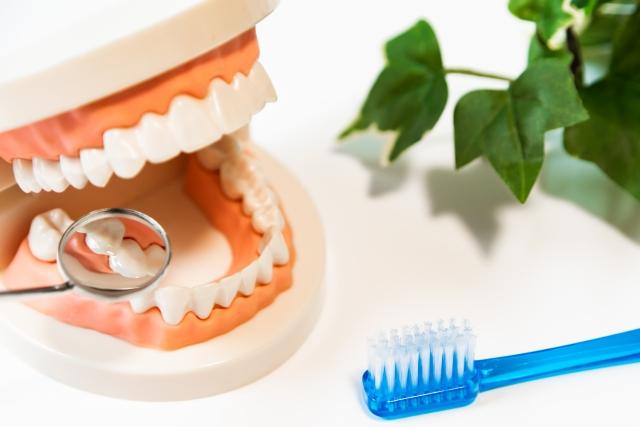 水素水で歯周病予防