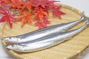 B12が含まれている秋刀魚